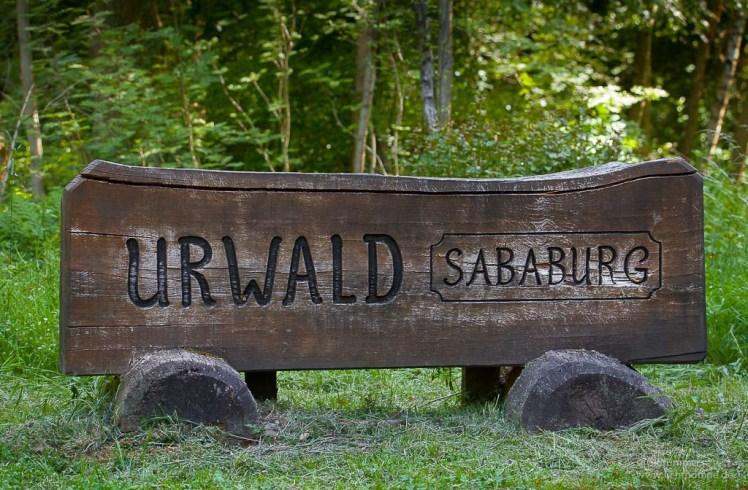 Bus_Urwald_Sababurg-101